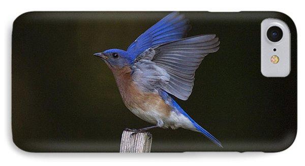 Bluebird  Phone Case by Angel Cher