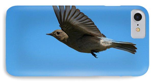 Bluebird Glide IPhone Case by Mike Dawson