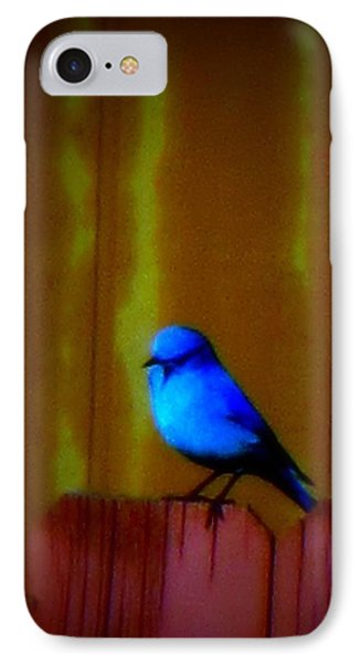 IPhone Case featuring the photograph Bluebird Of Happiness by Karen Shackles
