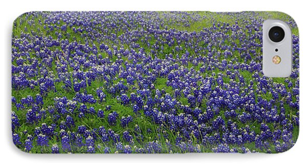 Bluebonnet Field IPhone Case by Robyn Stacey