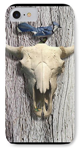 Bluejay And The Buffalo Skull IPhone Case