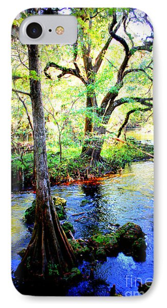 Blues In Florida Swamp Phone Case by Carol Groenen