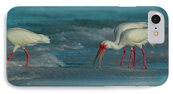 Ibis iPhone 7 Case - Blues Trio Cortez Beach by Betsy Knapp