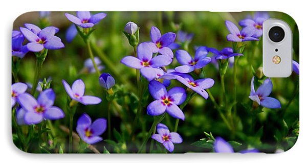 IPhone Case featuring the photograph Bluets by Kathryn Meyer
