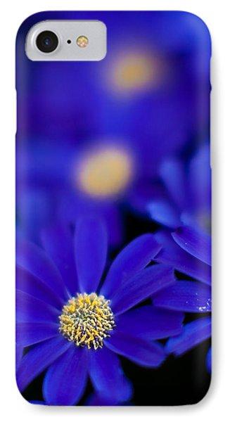 Bluey Gerbera IPhone Case by Mike Reid