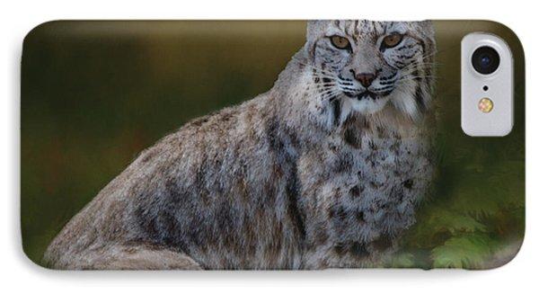Bobcat On Alert IPhone Case