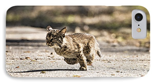 Bobcat On The Run IPhone Case by Michael White