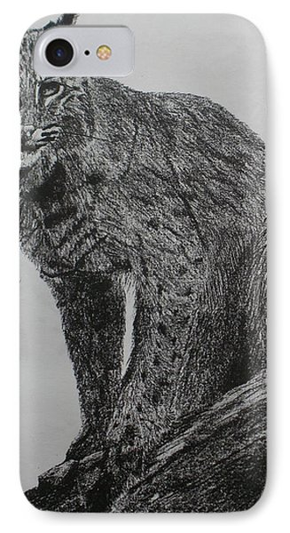 Bobcat IPhone Case by Phil Pedder-Smith