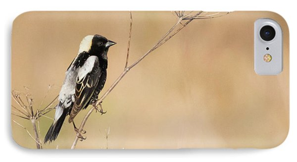 IPhone Case featuring the photograph Bobolink  by Ricky L Jones
