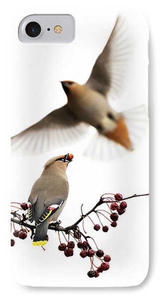 IPhone Case featuring the photograph Bohemian Waxwings by Mircea Costina Photography