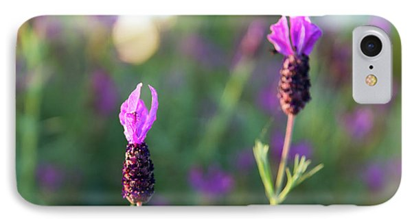 IPhone Case featuring the photograph Bokehlicious Bloom by Lora Lee Chapman