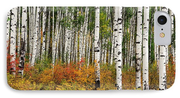 IPhone Case featuring the photograph Bold And Magnificent Autumn by Tim Reaves