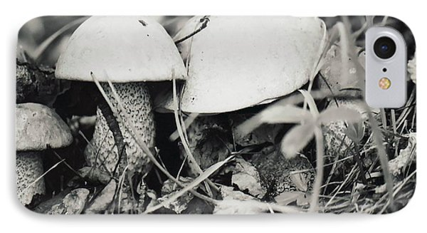 IPhone Case featuring the photograph Boletus Mushrooms by Juls Adams