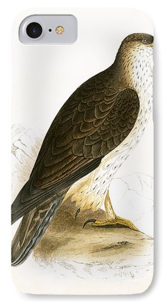 Bonelli's Eagle IPhone 7 Case by English School