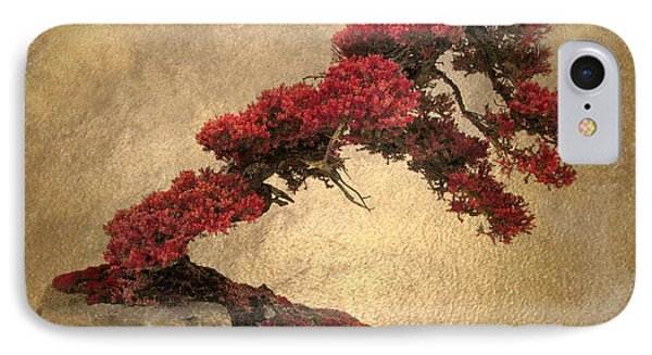 Bonsai Display IPhone Case
