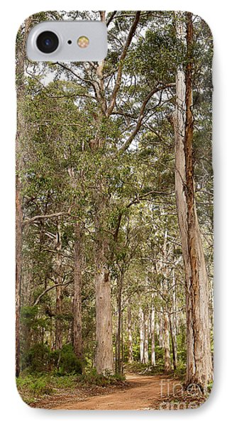IPhone Case featuring the photograph Boranup Drive Karri Trees by Ivy Ho