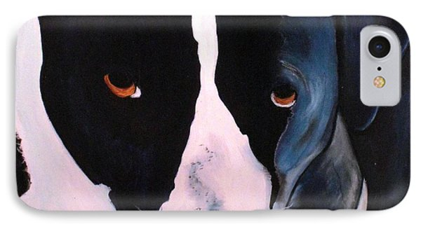 Border Collie- Sasha IPhone Case