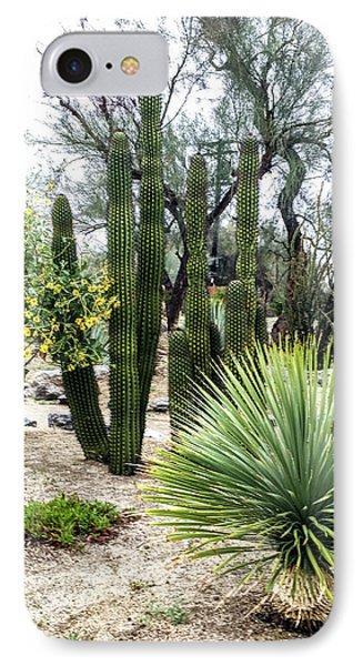 Borrego Botanical Garden IPhone Case