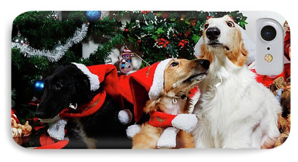IPhone Case featuring the photograph Borzoi Hounds Dressed As Father Christmas by Christian Lagereek