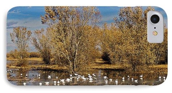 Bosque Del Apache Phone Case by Kurt Van Wagner