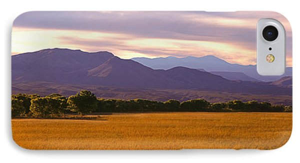 Bosque Del Apache National Wildlife IPhone Case by Panoramic Images