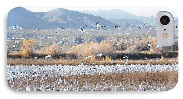 Bosque Del Apache Snow Geese Landscape IPhone Case by Andrea Hazel Ihlefeld