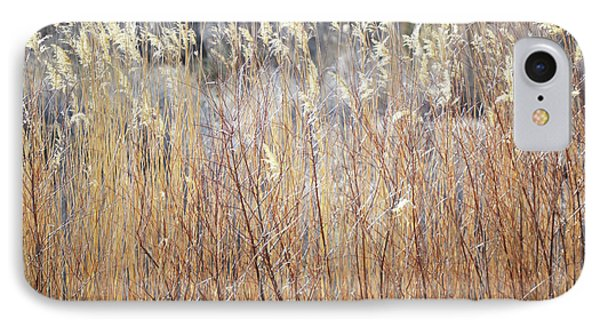 IPhone Case featuring the photograph Bosque Desert Willows by Andrea Hazel Ihlefeld