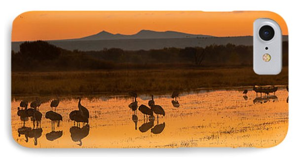 Bosque Sunrise IPhone Case by Alan Vance Ley
