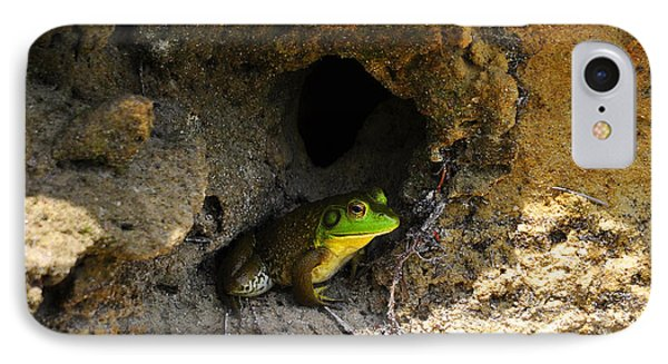 IPhone Case featuring the photograph Boss Frog by Al Powell Photography USA
