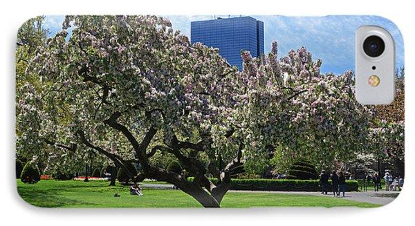 Boston Public Garden Spring Tree Boston Ma IPhone Case by Toby McGuire