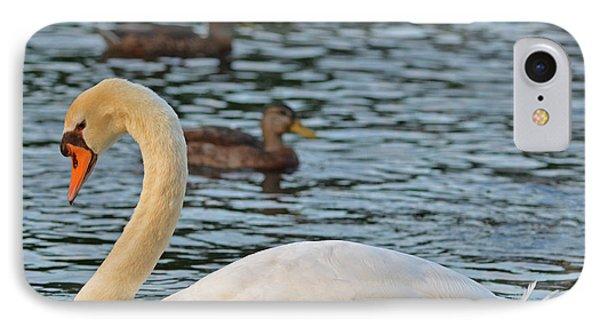 Boston Public Garden Swan Amongst The Ducks IPhone Case by Toby McGuire