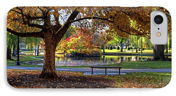 Boston Public Garden Yellow Autumn Tree Boston Ma IPhone Case by Toby McGuire