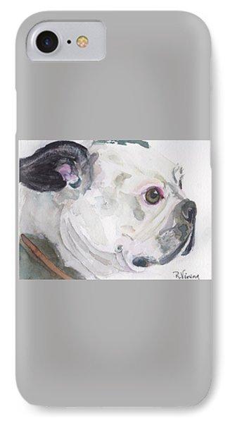 Boston Terrier IPhone Case by Raelene Vining