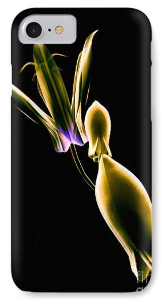 Botanical Study 1 Phone Case by Brian Drake - Printscapes