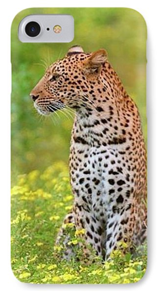 Botswana Leopard  IPhone 7 Case by Happy Home Artistry