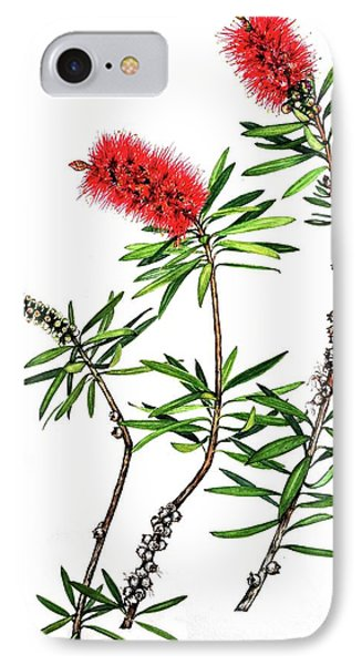 Bottle Brush IPhone Case by Heidi Kriel