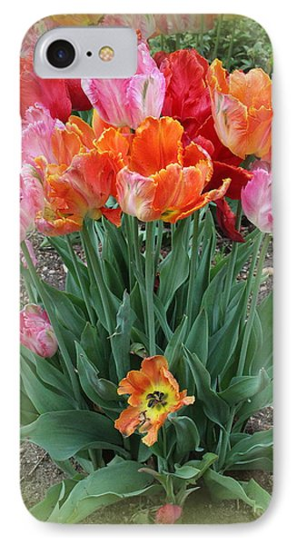 Bouquet Of Colorful Tulips IPhone Case