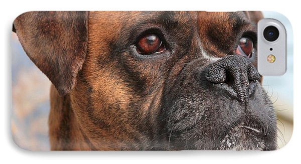 Boxer Portrait IPhone Case by Debbie Stahre