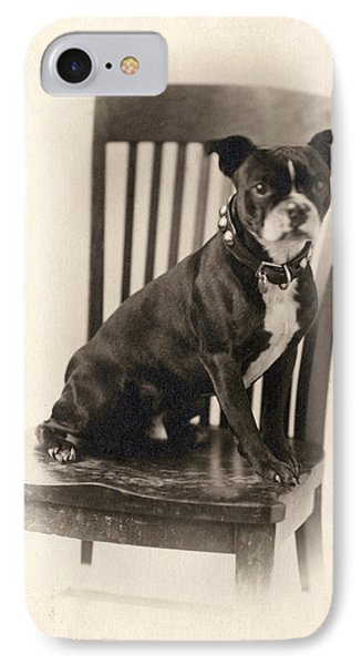 Boxer Sitting On A Chair IPhone Case by Unknown