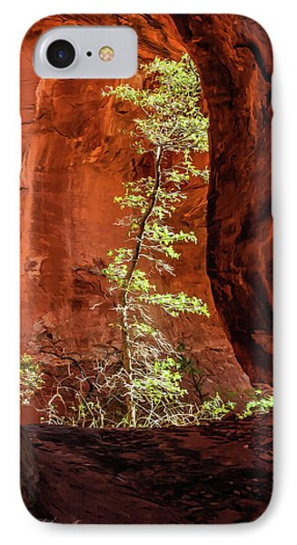 Boynton Canyon 07-034 IPhone Case by Scott McAllister