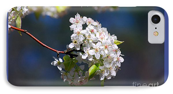 IPhone Case featuring the photograph Bradford Pear Blossoms 20120402_116a by Tina Hopkins