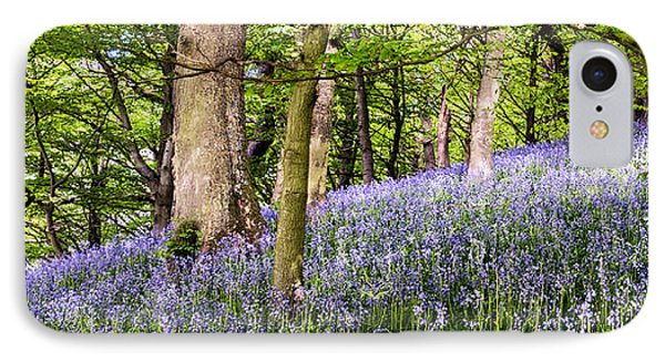 Bransdale Bluebells IPhone Case by Janet Burdon