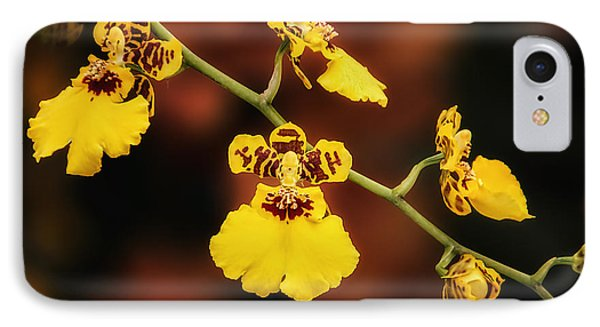 Bright And Beautiful Orchids IPhone Case
