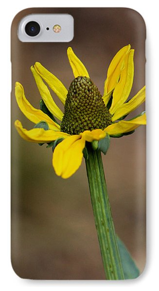 Bright And Shining IPhone Case by Deborah  Crew-Johnson