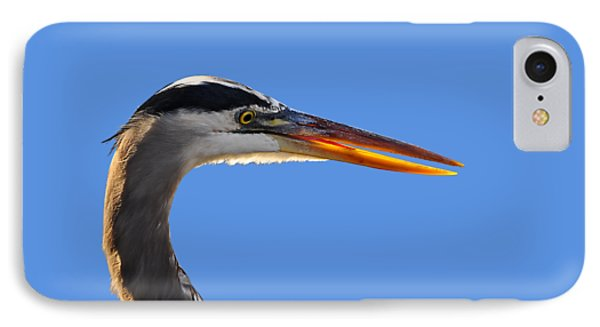 IPhone Case featuring the photograph Bright Beak Blue .png by Al Powell Photography USA