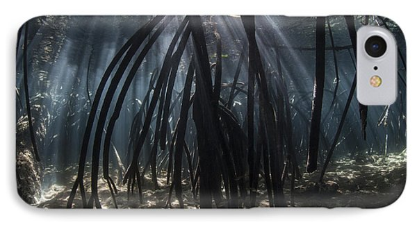 Bright Beams Of Sunlight Filter Among IPhone Case by Ethan Daniels