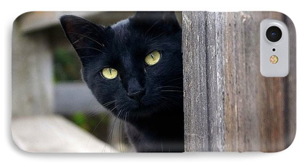 Bright Eyed Kitty IPhone Case