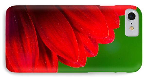 Bright Red Chrysanthemum Flower Petals And Stamen IPhone Case by John Williams