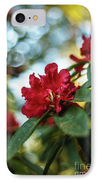 Bright Red Rhododendron IPhone Case by Mike Reid
