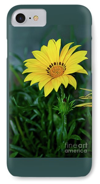IPhone Case featuring the photograph Bright Yellow Gazania By Kaye Menner by Kaye Menner